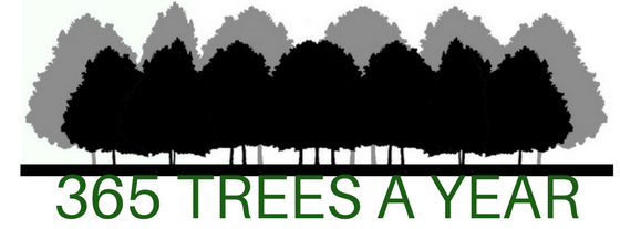 365 TREES A YEAR Goal