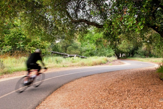 A biker travels along the American River Parkway.